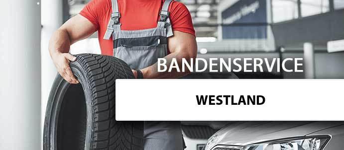 banden-wisselen-westland